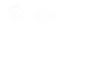 Aventure écotourisme Québec logo