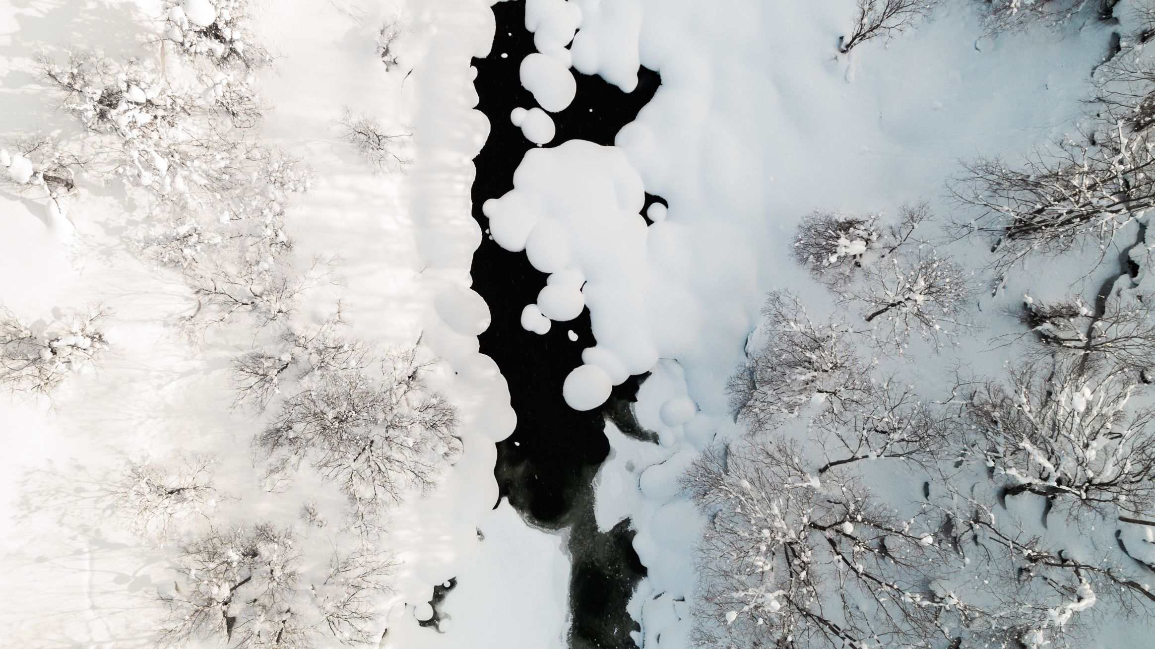 Aerial view of snowing river and forest.