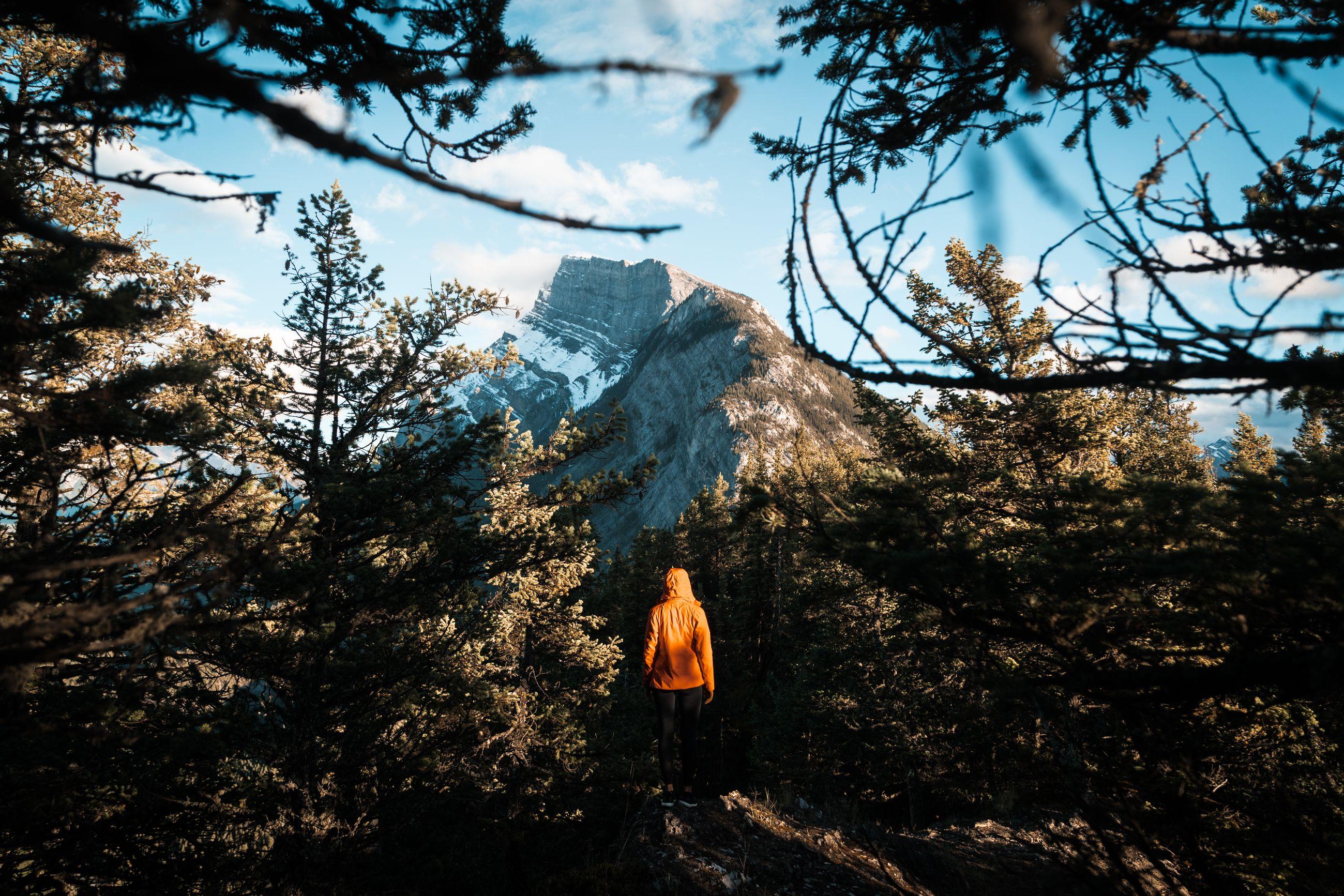 A figure walking through forest towards rocky mountain.