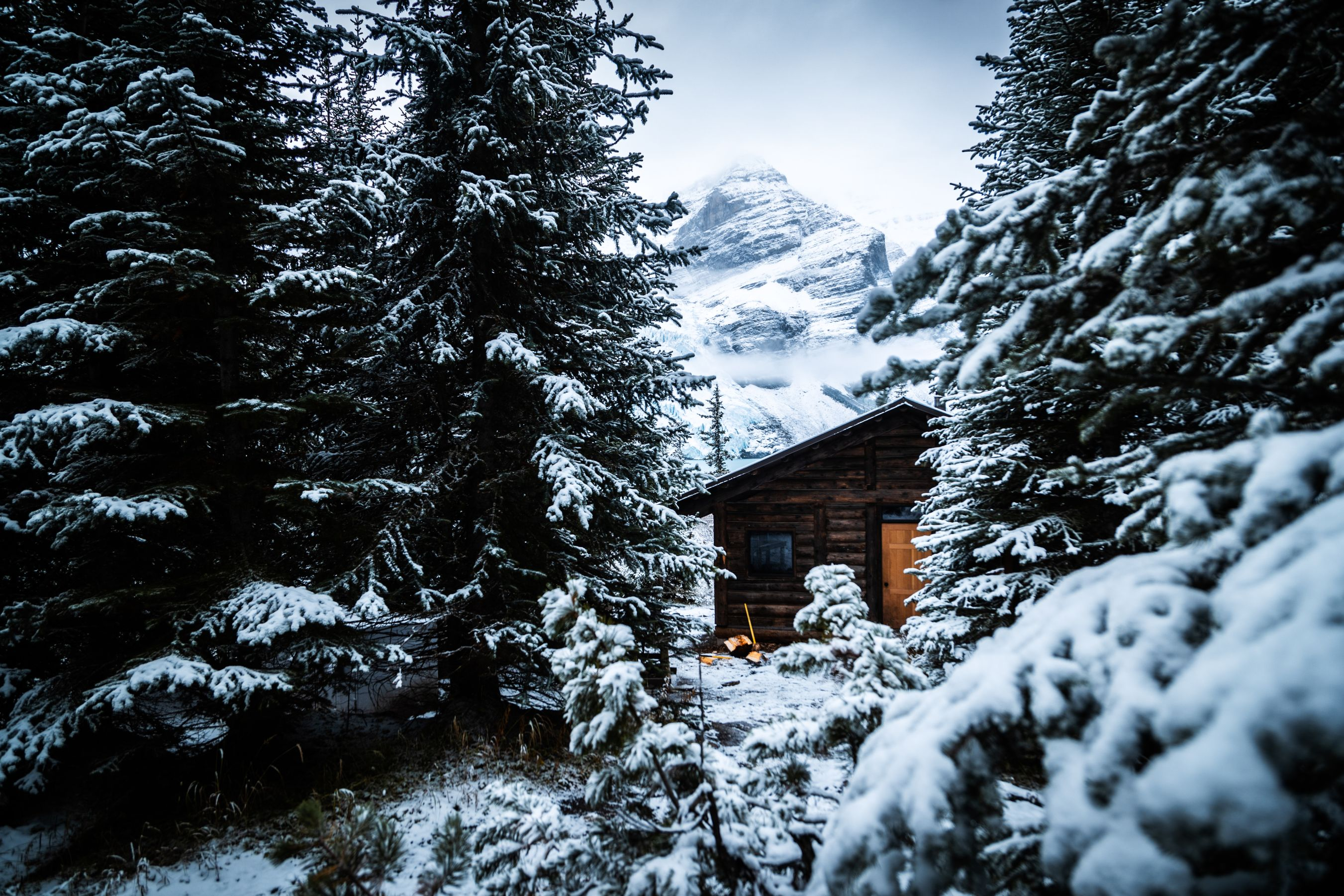 Small log cabin set amongst snowy trees.