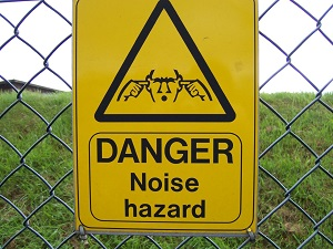 Hearing Protection 1.jpg