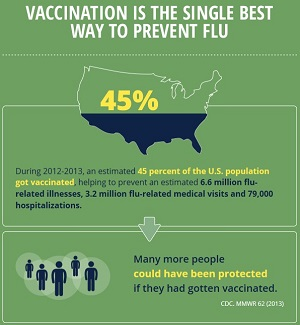 Infographic about Seasonal Flu