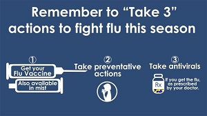 Infographic, Get Flu Vaccine, Take Preventative Actions, Take Antivirals