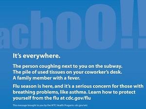 Flu Season Infographic
