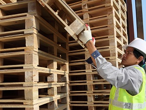 Worker Stacking Empty Pallets