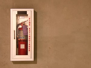 Fire Extinguisher in Wall-Mounted Cabinet