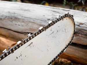 Close-up view of the chainsaw bar and chain.