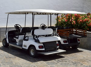 Two parked golf carts.