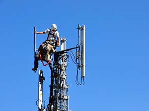 Two tower climbers working on a cell tower.