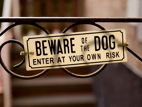 Sign on a gate that says Beware of the Dog, Enter at Your Own Risk.