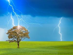 Lightning striking a tree in a meadow.