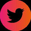 logo eicon Twitter.