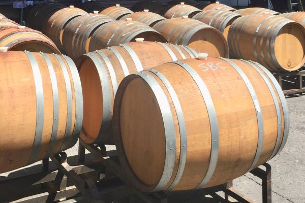 Barrels of our Santa Barbara Pinot Noir