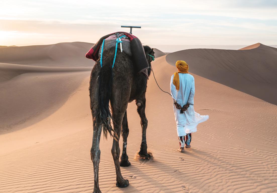 A camel ride through the dessert in Dubai in the United Arab Emirates