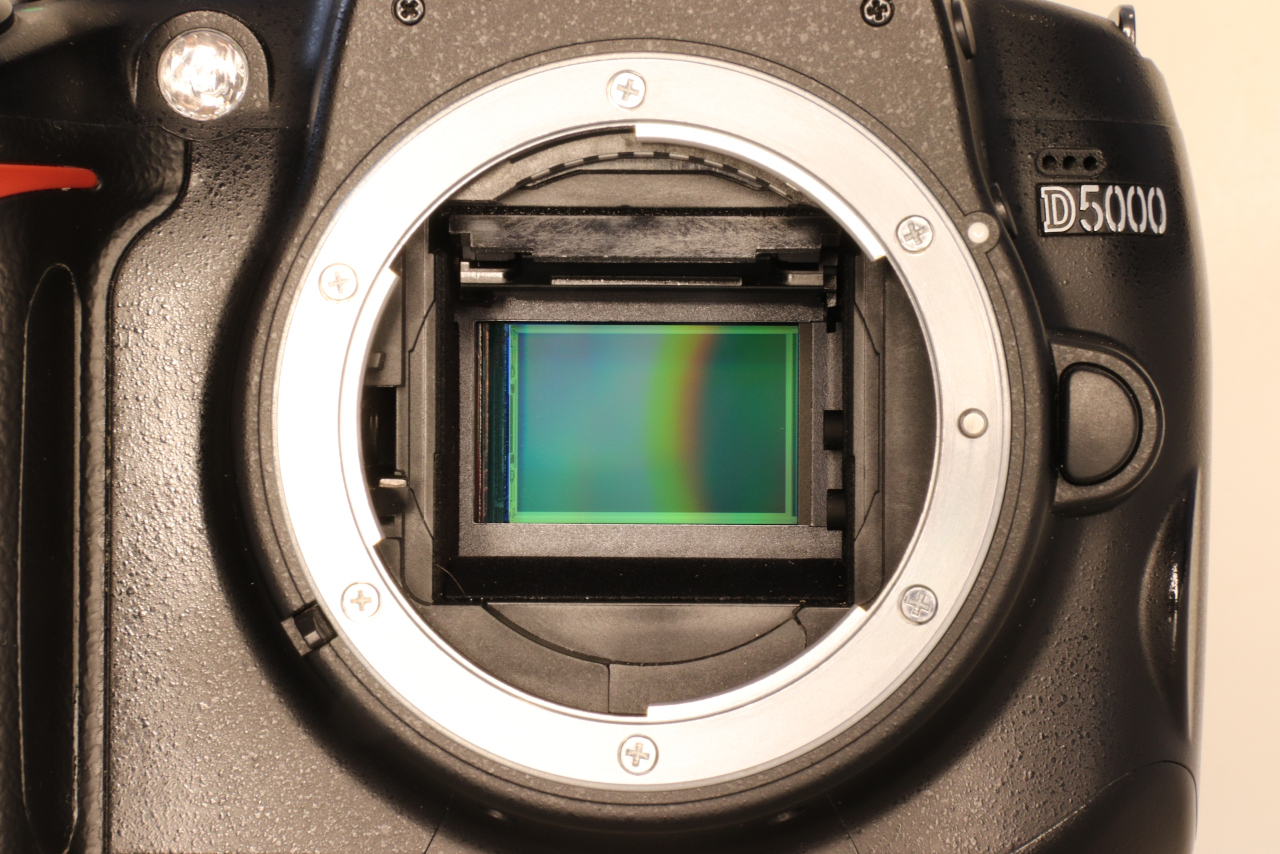 The image sensor of a Nikon D5000