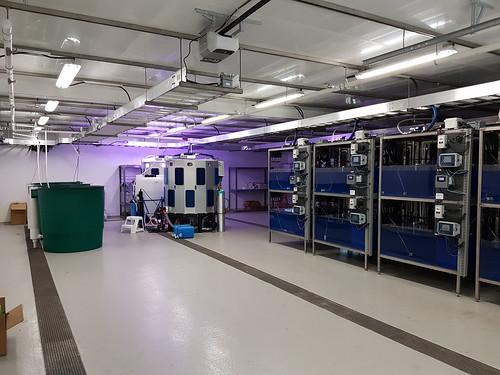 Marna Lab At Hakai Institute's Quadra Island Observatory
