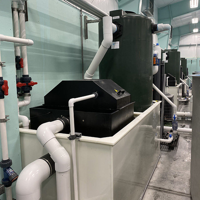 Integrated Filtration Module with with Biofilter and Microscreen Drum Filter