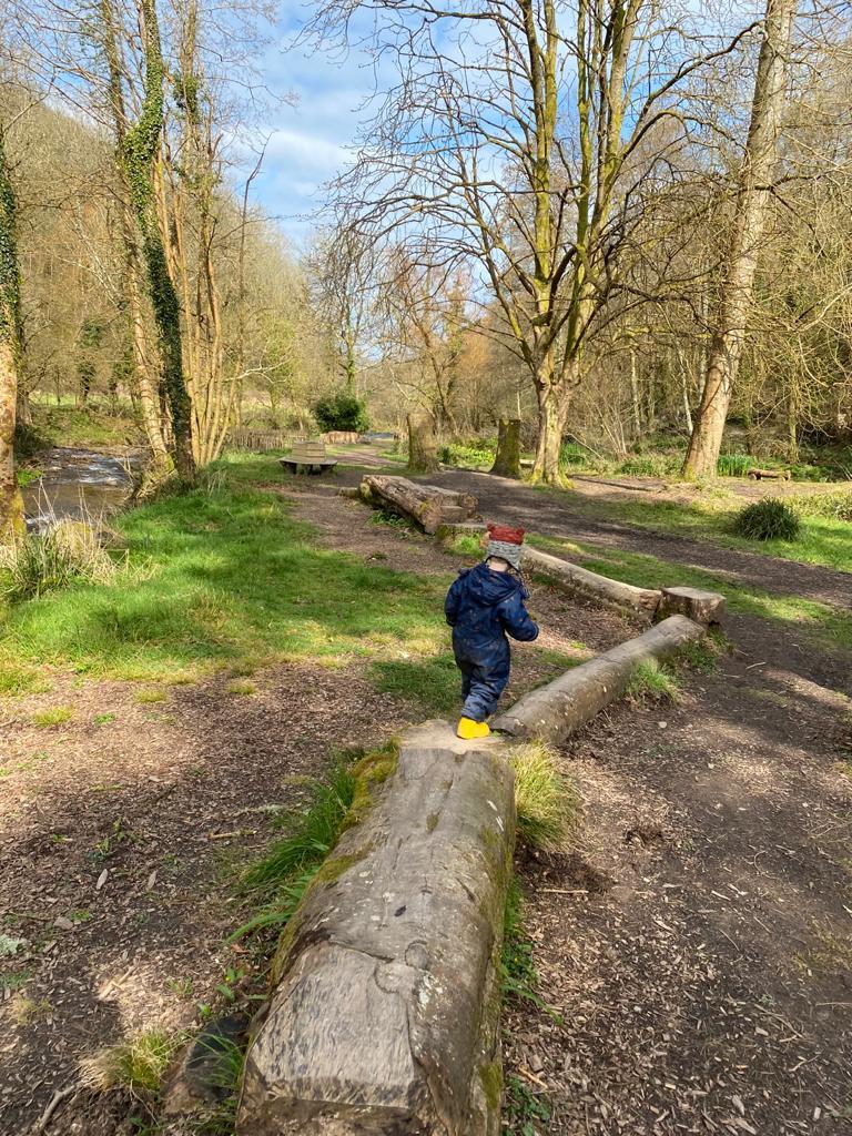 boy climbing on a fallen tree in the woods