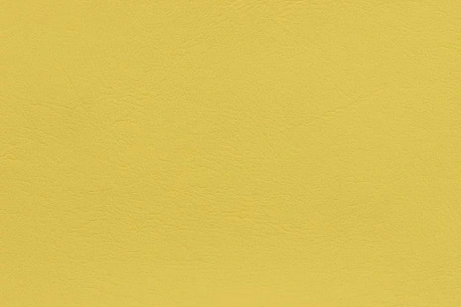 Maritime Yellow 0016