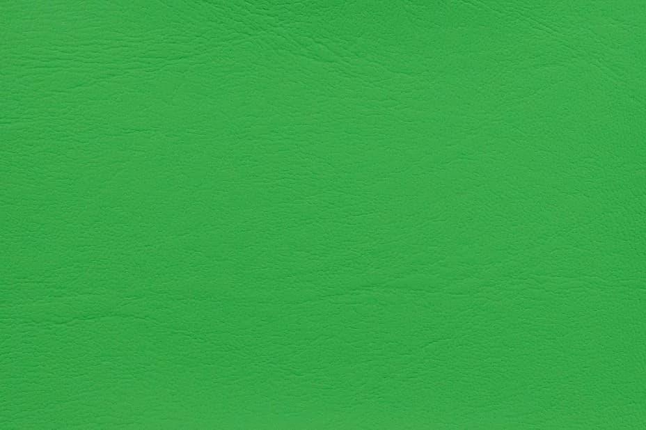Maritime Lime 0024