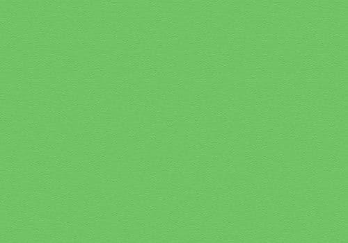 3144 Pea Green Velur