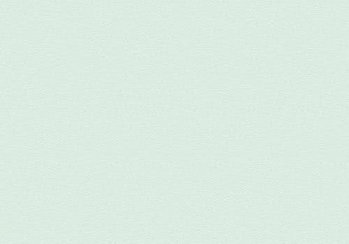 3143 Mint Green Velur