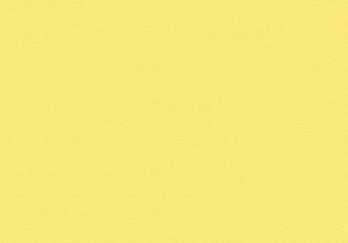 3128 Sunflower Yellow Velur