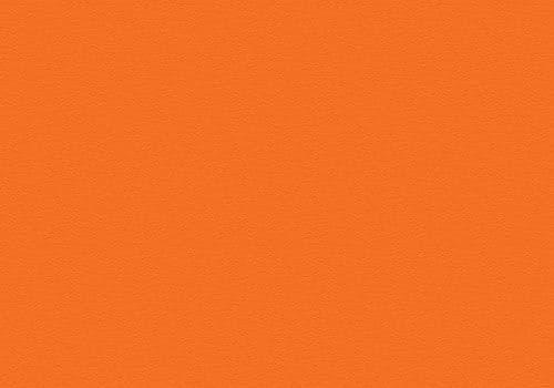 3118 Florida Orange Velur