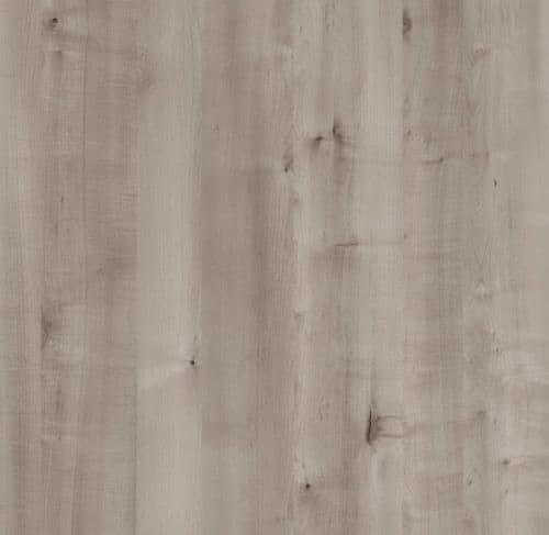 4645 Grey Birch Velur