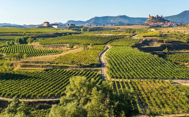 La Rioja, Spain