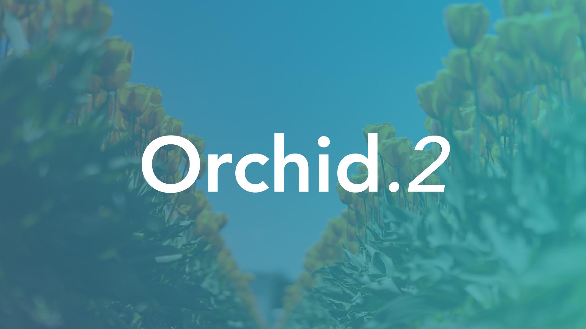 CodeGrade version Orchid.2