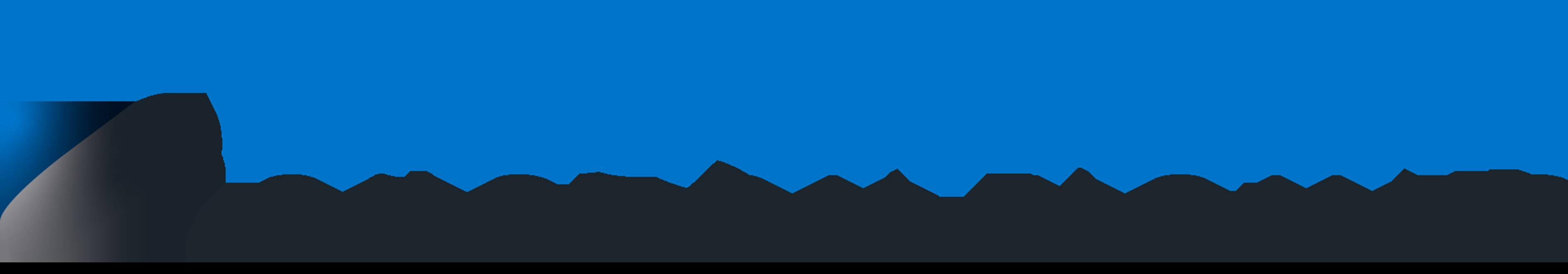 Blueneer Logo
