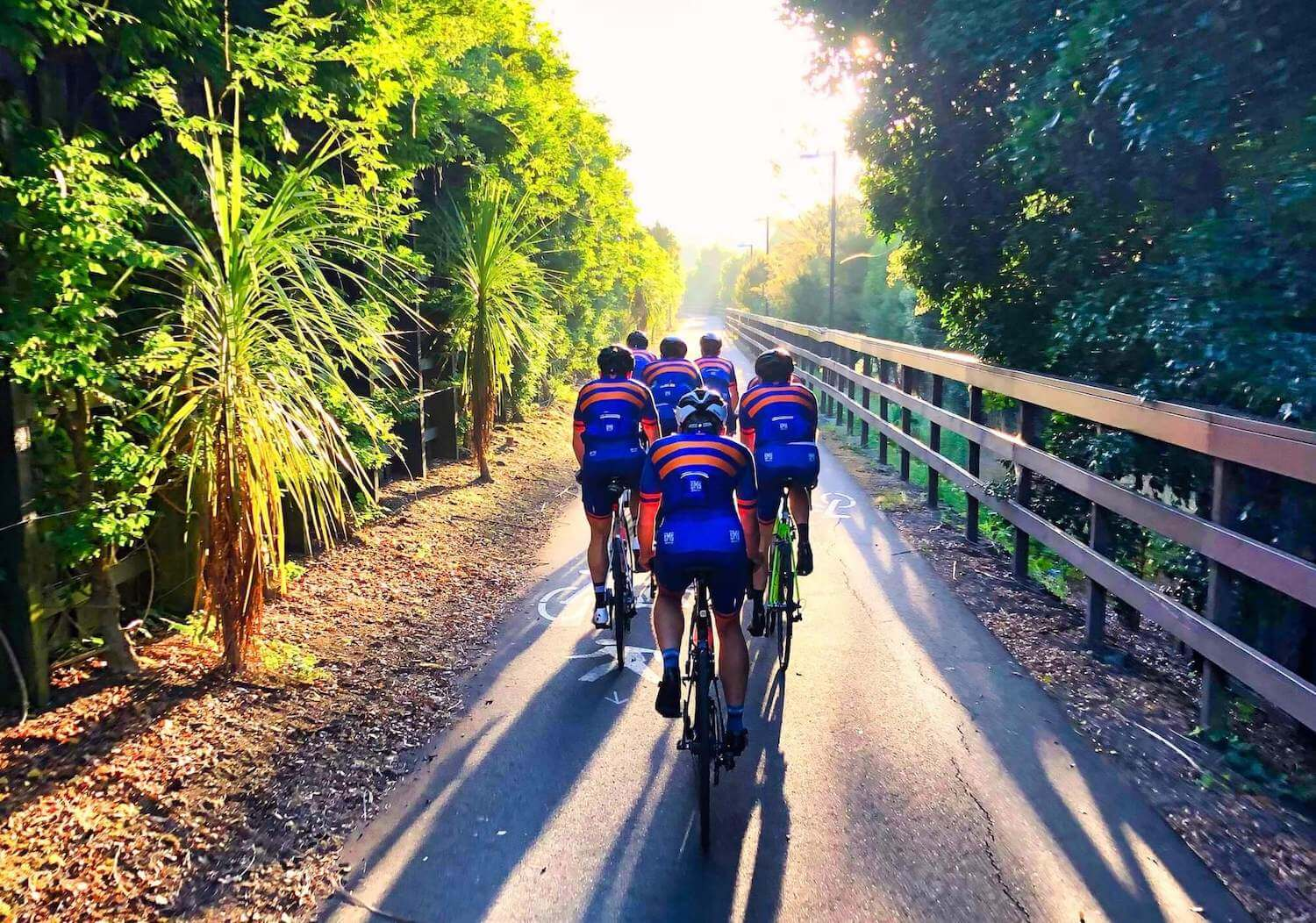 Bunch of cyclings on a group bike ride in Auckland