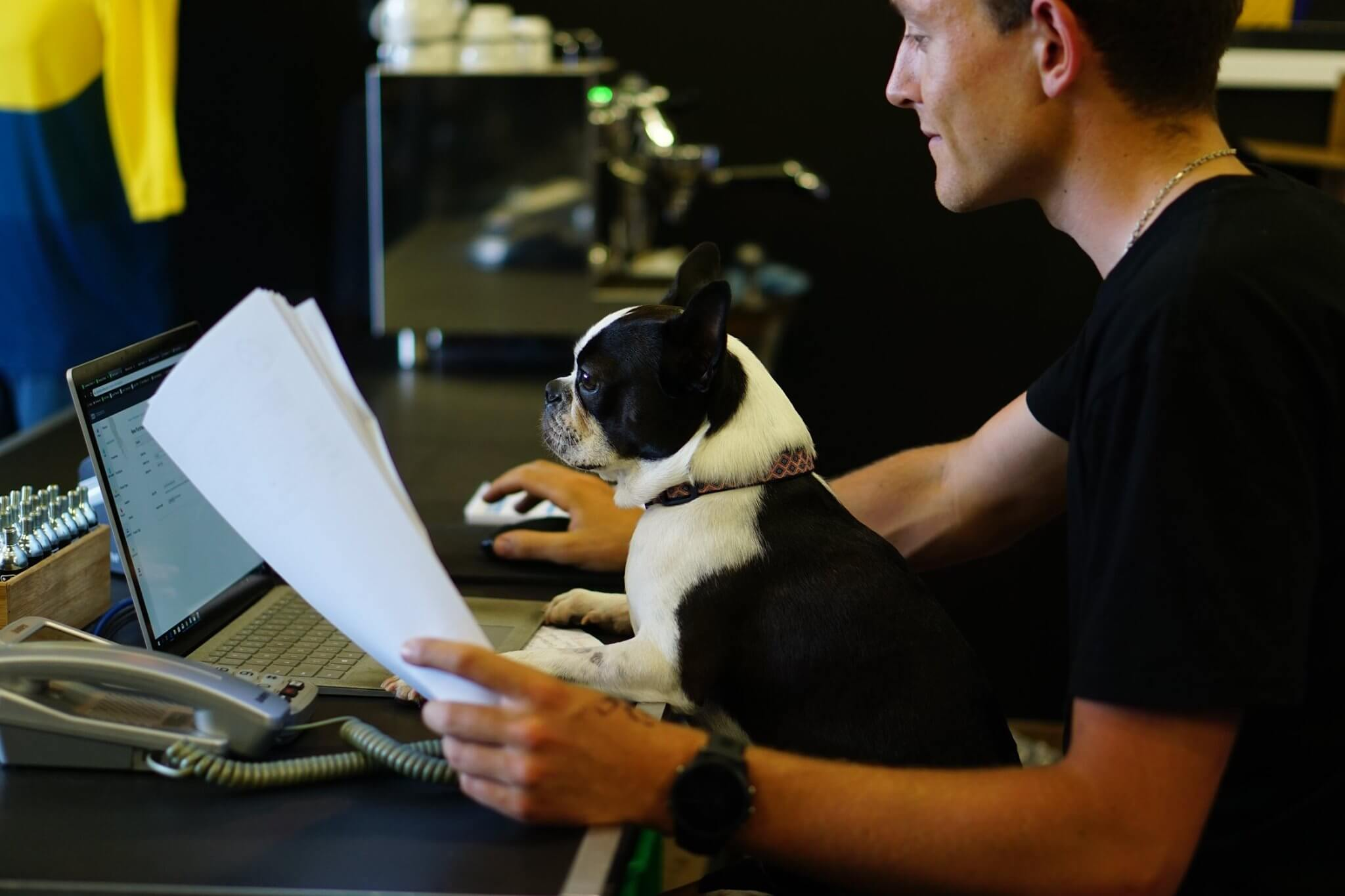 Logan Griffin and a dog, Chewie, working on a computer at CYCO