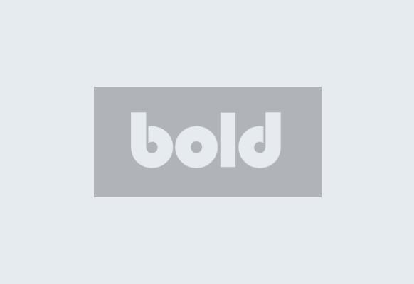 Bold Partners