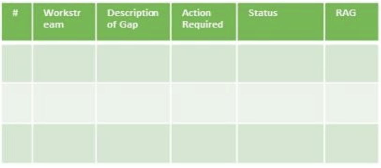 Operating Model Gap Action Items