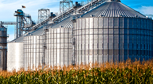 silo de almacenamiento en campo de maíz