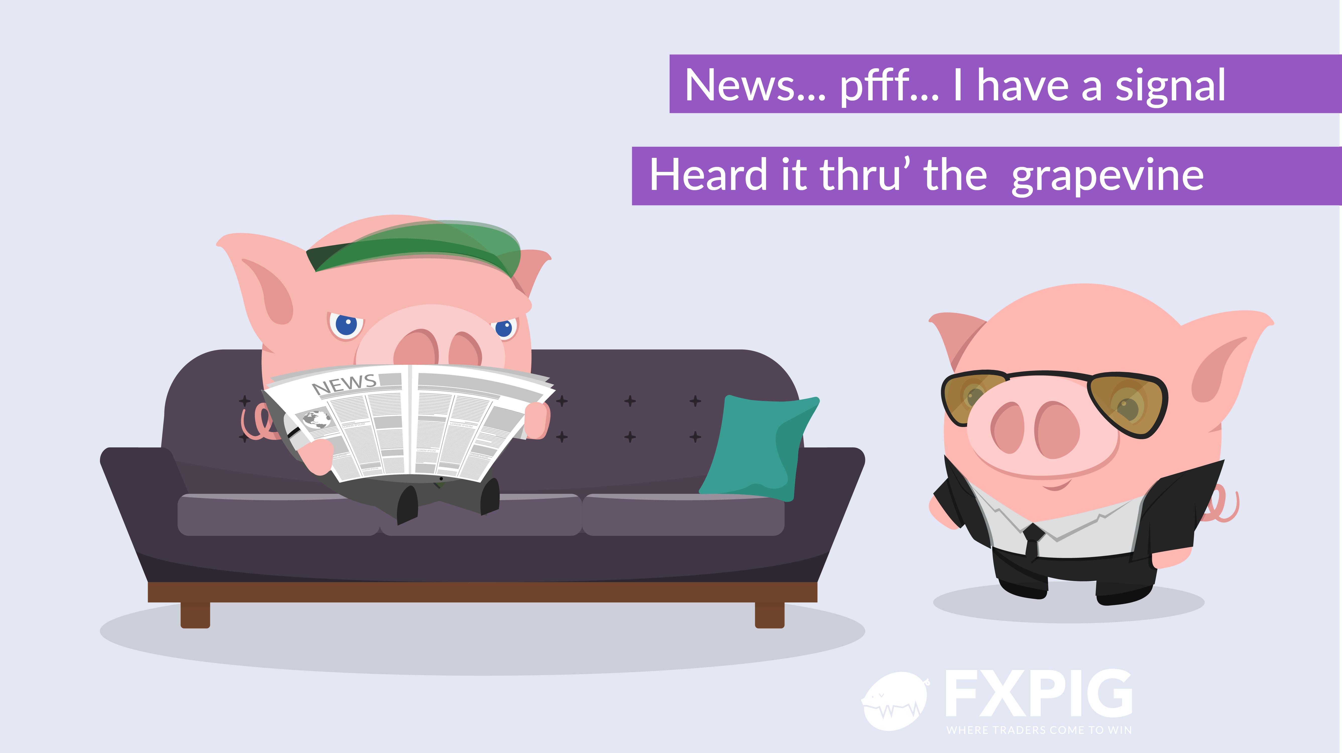 FOREX-Trader-blog_FXPIG