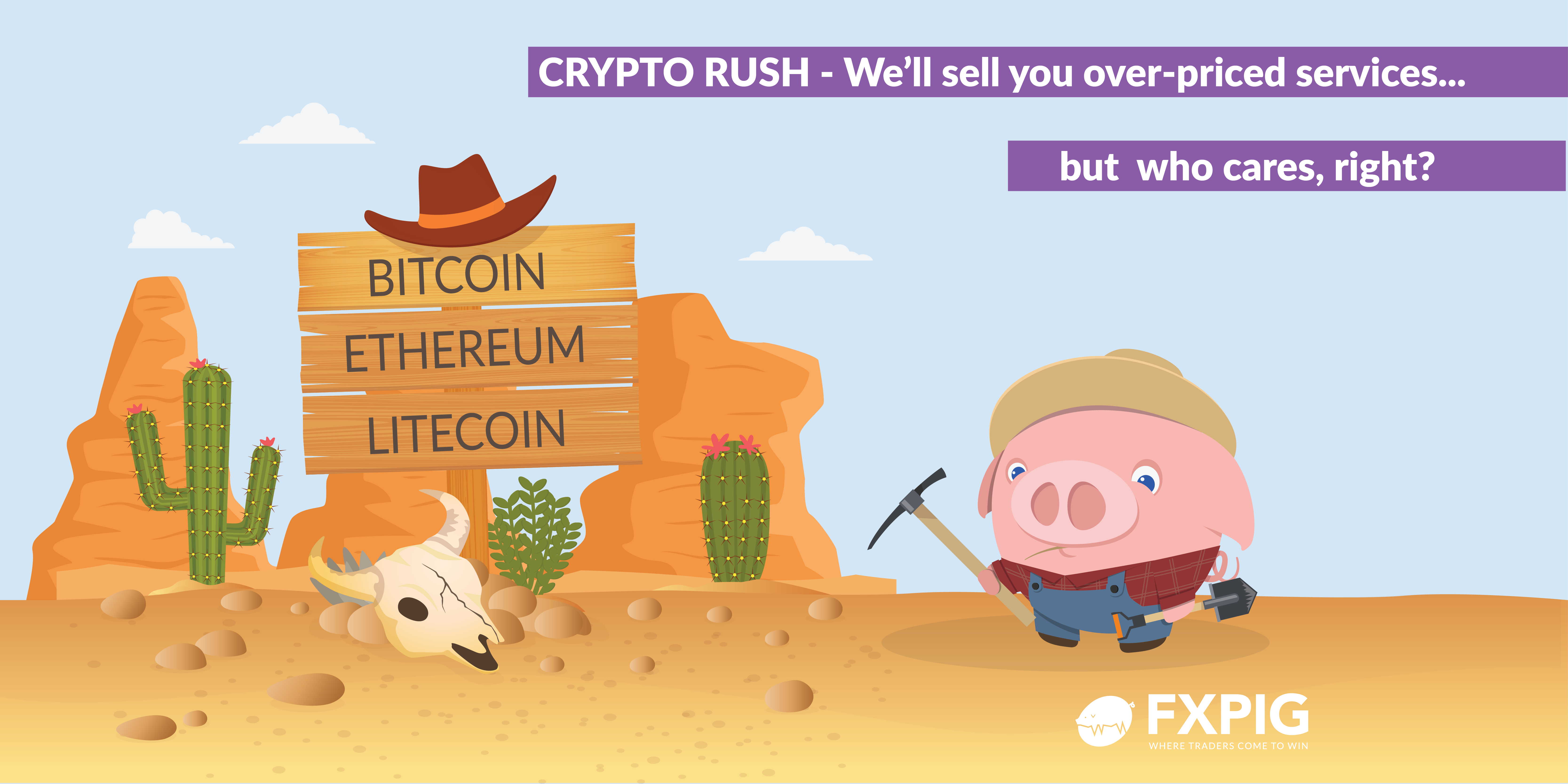 FOREX_Crypto-rush_Mr-Markets_FXPIG