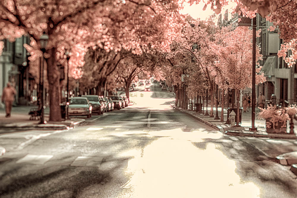 Looking down a road in York, PA shot in Infrared