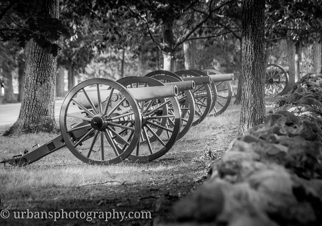 Canon along Confederate Ave near McMillian's woods.