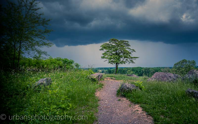 Storm over a lone tree on the north slope of Little Round Top.