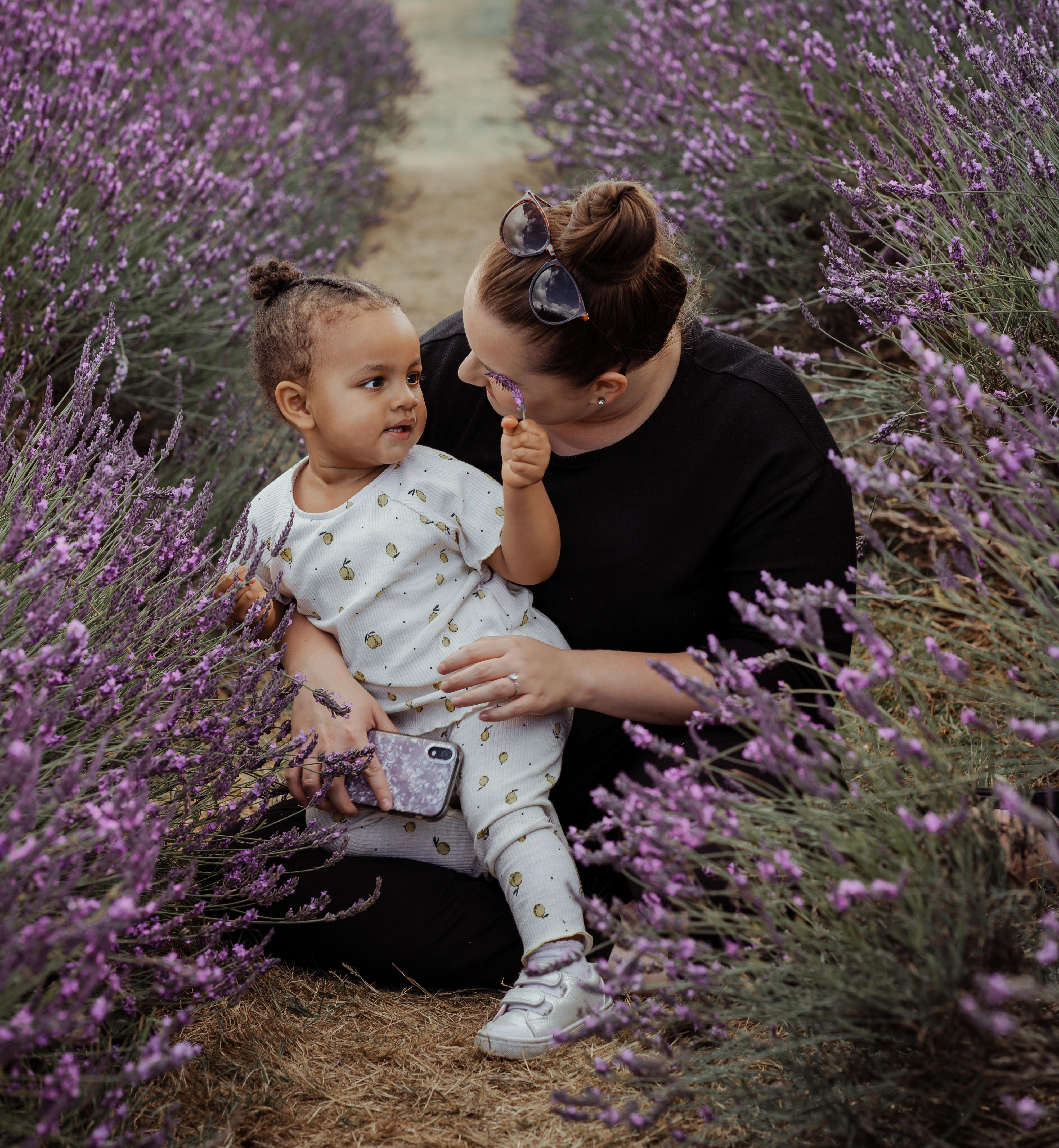 Lavender field family photography