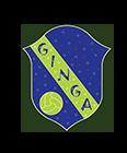 Ginga Futsal