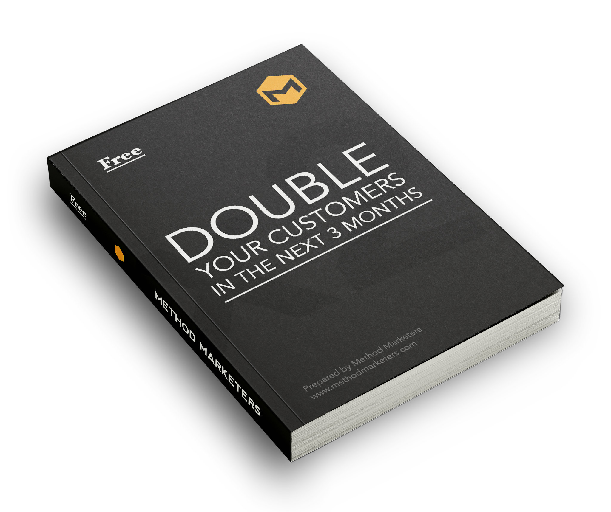 Double your customers in the next 3 months PDF book.