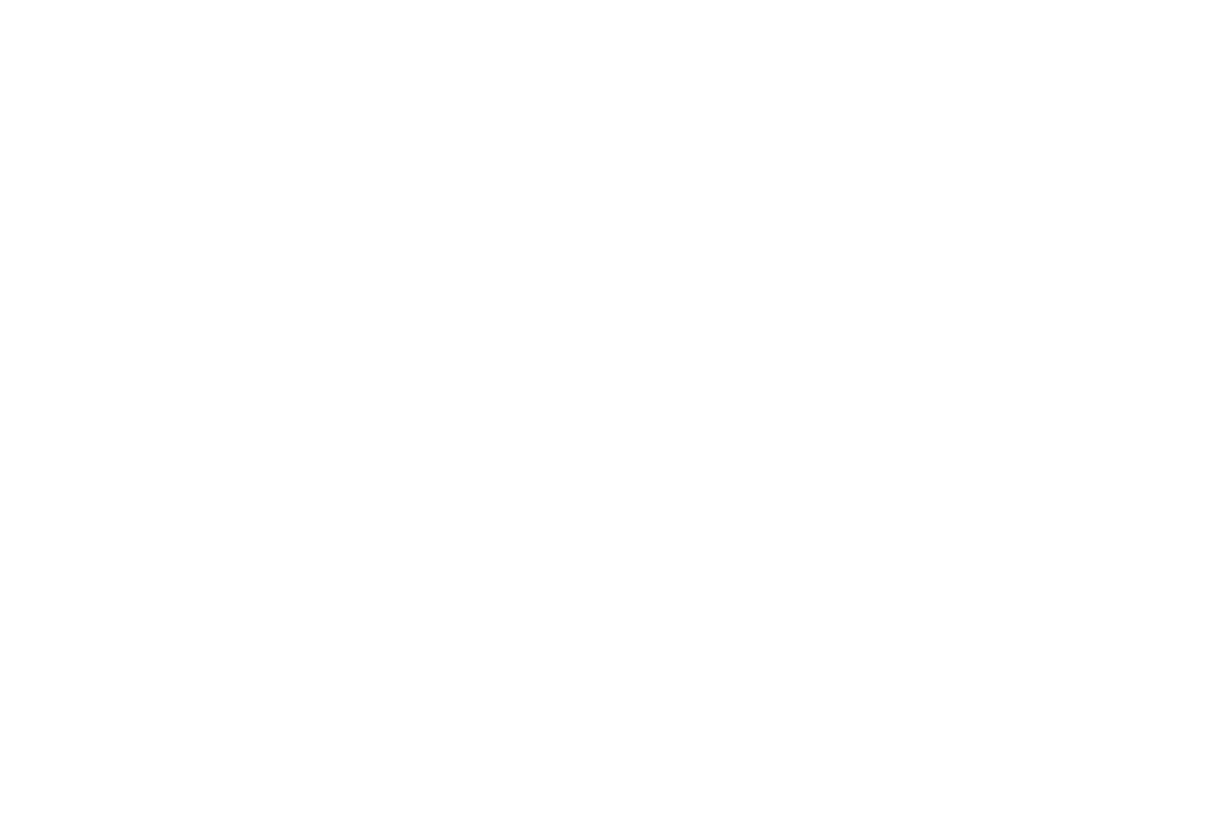 Seattle Film Festival Laurels