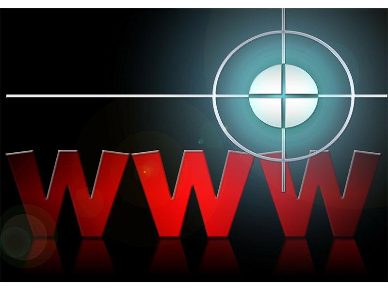 Am Haken: Phishing-Falle World Wide Web