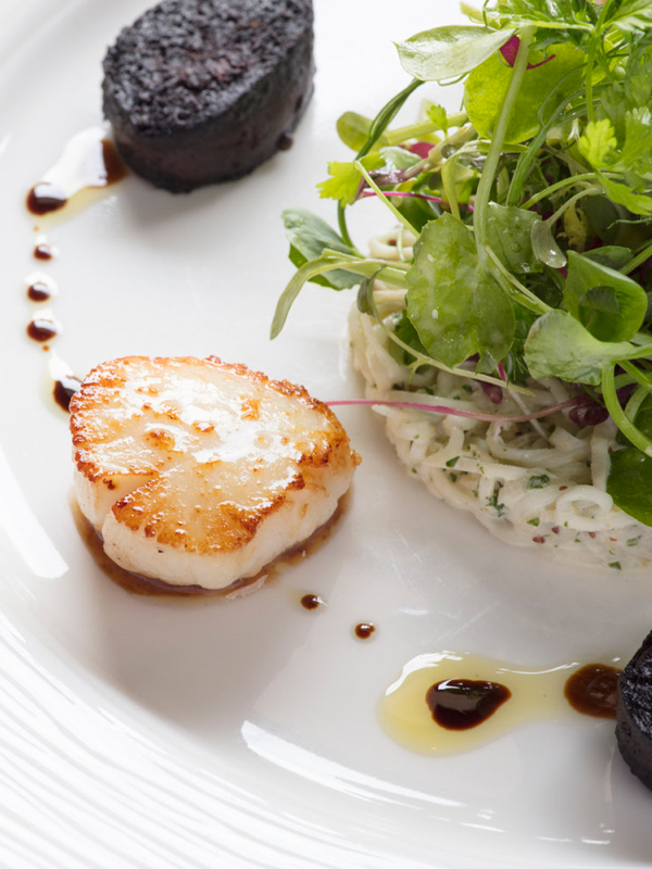 Scallop, salad, black pudding on a white page