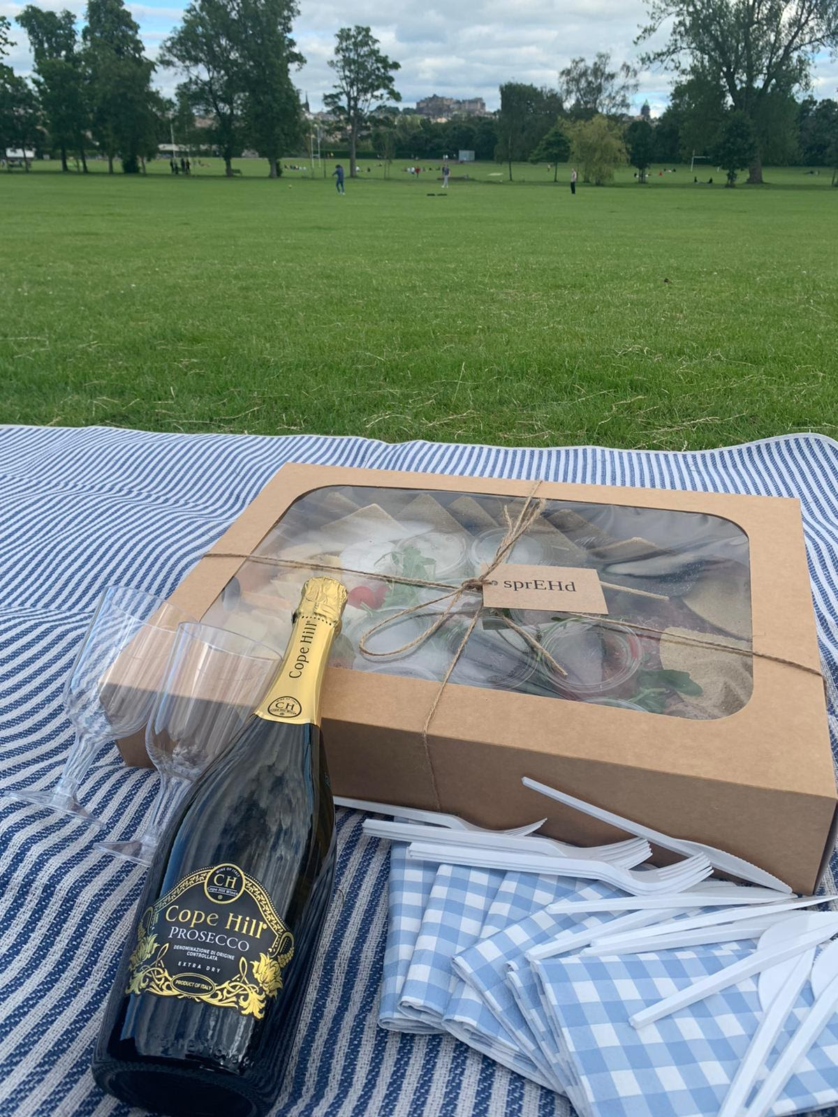 SprEHd box and wine in Inverleith Park