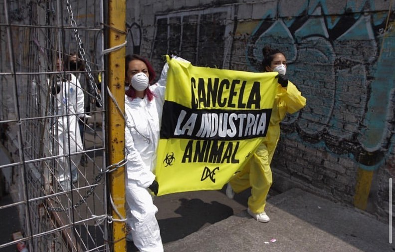 Protest at a market of live animals in Mexico city